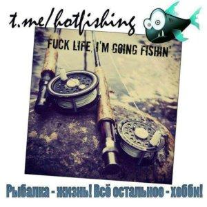Рыбалка • Pro Fishing