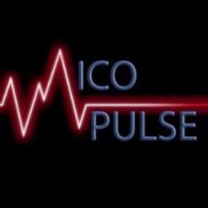 ICO-Pulse RU