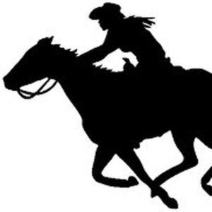 Быть на коне