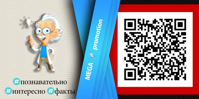 Познавательные Telegram-каналы